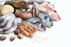 Морепродукты - причина аллергии у детей