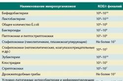 Состав микрофлоры кишечника в норме