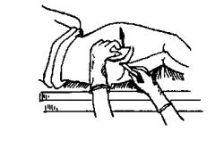 Схема взятия соскоба на энтеробиоз