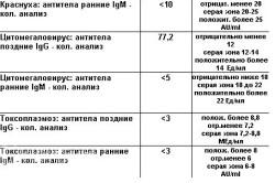 Расшифровка анализов на ТОРЧ-инфекции