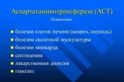 Аспартатаминотрансфераза