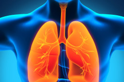 Туберкулез - причина эритроцитов в моче