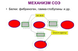 Механизм СОЭ
