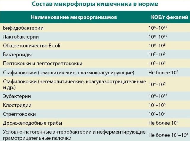 страховая медицинская компания оао газпроммедстрах филиал в санкт-петербурге
