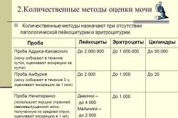 Сбор анализа мочи по аддису-каковскому.нечиноренко медицинская справка гаи метр