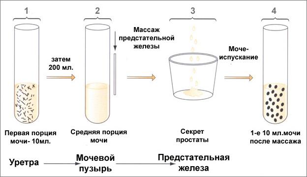 анализ секрет